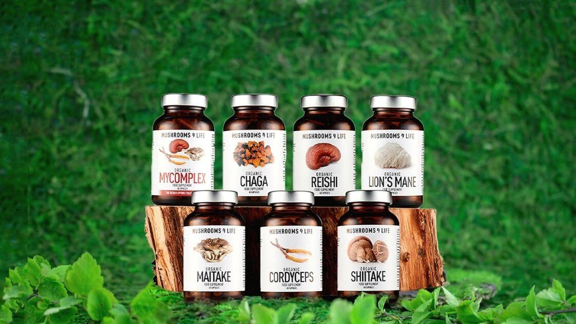 mushroom-supplements-you-should-know